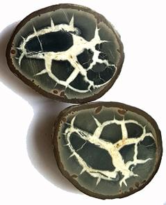Septaria- Äggform - Två delar - Big