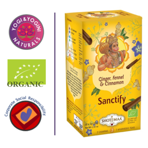 Sanctify - Ginger, Fennel & Cinnamon Tea - EKO