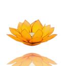 Lotuslyktan i snäckskal - Guldmetall - Gul - Chakra 3