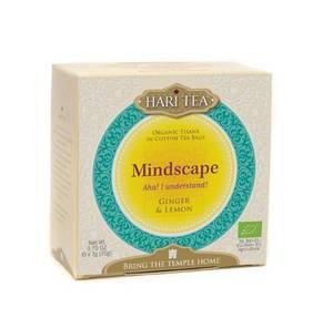 Mindscape Aha! I understand! Ginger & Lemon Te