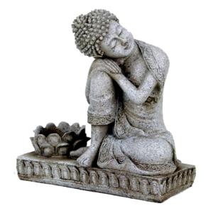 Mediterande Thai med Lotus