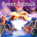 Power Animals - Niall