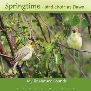 SPRINGTIME BIRD CHOIR -  Idyllic Nature Sounds