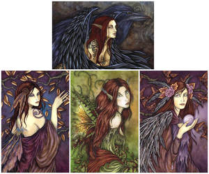 Amy Brown Vykort Morrighan Paket