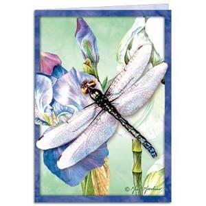 Dubbla vykort - Dragonfly Vision