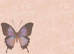 Dubbla vykort - Be the change
